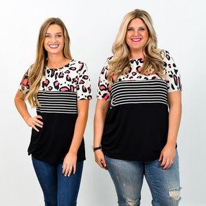 Cute Boutique Shirt 2X NWT